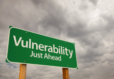 vulnerability just ahead lollydaskal